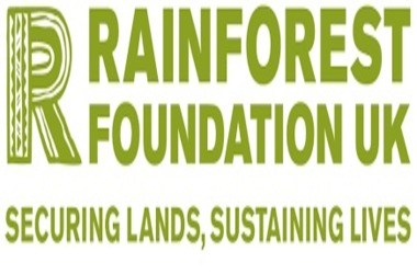 Rainforest Foundation Accepts Crypto Donation In Their Efforts to  Save Amazon Forest