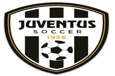 Juventus Soccer Club Introduces Blockchain Based Token For voting by Fans