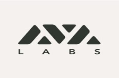 Blockchain Startup AVA Labs Takes Over Private Investments Platform  Investery
