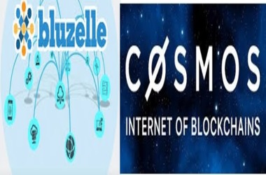 Blockchain Focused Bluzelle Identifies Vital Glitch in Cosmos' Consensus Protocol
