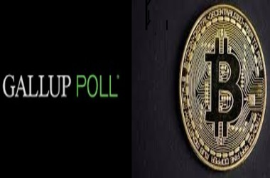 Gallup – Number of Bitcoin Investors has Tripled since 2018