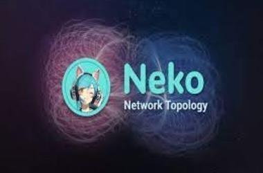 DeFi Platform Neko Network Gets Hacked