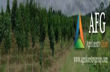 Agroforestry Accepts Bitcoin as a Mode of Payment
