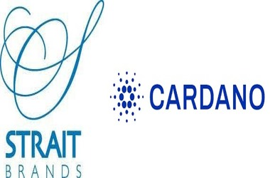 Vodka Manufacturer Strait Brands Opts For Cardano blockchain to Track Supply Chain
